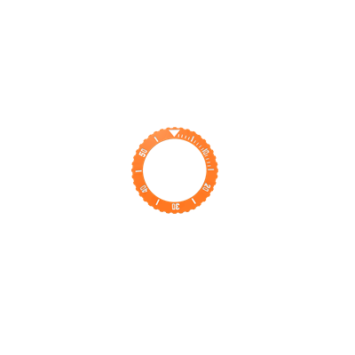 Picture of Orange Bezel